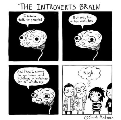 Image result for introvert comics