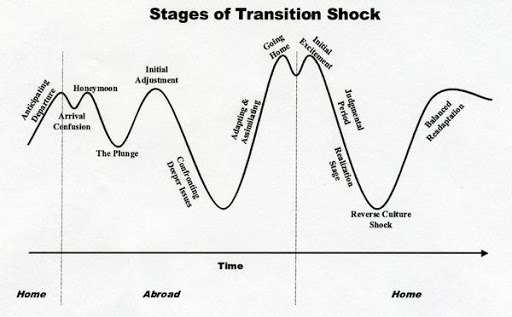 culture shock graph